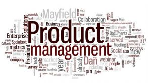 Technology Product Management by Prof Bhupender Singh